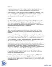 Lokalni anastetici-Beleska-Anesteziologija i reanimatologija-Medicina