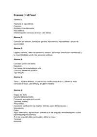 Derecho Penal 05 2013