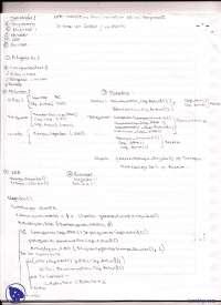Simulación de eventos - Ejercicio - Apuntes - Simulación