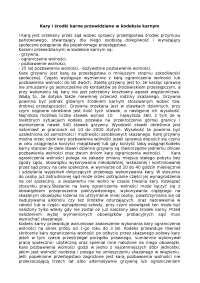 Kary i środki karne przewidziane w kodeksie karnym - Notatki - Prawo