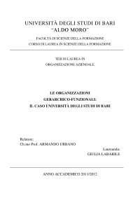 Le OGF - Il caso Università - Tesi - Organizzazione aziendale