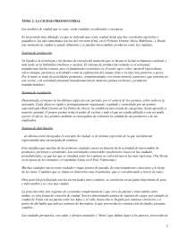 La ciudad preindustrial - apuntes - Geografía Humana, Apuntes de Geografía