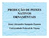 Produção de peixes Nativos Ornamentais - Apostilas - Engenharia de Pesca