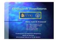 Produção de Biopolímeros - Apostilas - Engenharia Química
