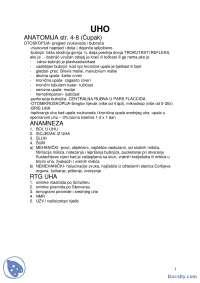 UHO GRLO NOS-Skripta-Otorinolaringologija-Medicina