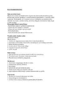 Plan marketingowy - Notatki - Marketing