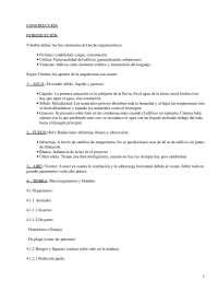 Construcción - Apuntes - Arquitectura