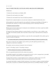 Estructura del cálculo de costes. Organización empresarial - Apuntes - Management