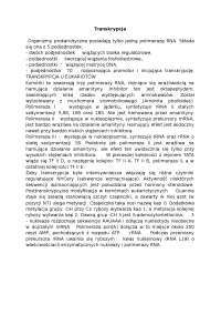 Transkrypcja - Notatki - Biochemia