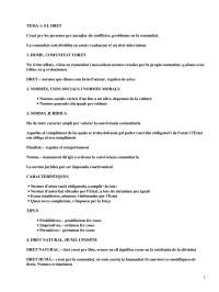 El dret - Apuntes - Management_Parte1