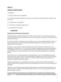 Límites y limitaciones - Apuntes - Derecho