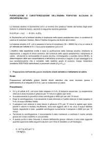 relazione di laboratorio di biochimica - Università di Milano-Bicocca