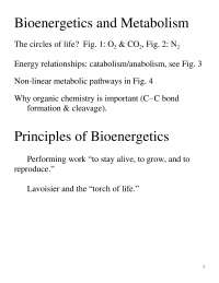 Bioenergetics and Metabolism - Biochemistry - Lecture Handout