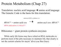 Protein Metabolism - Biochemistry - Lecture Handout