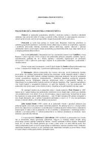 Ekonomika Poduzetnistva Skripta Ekonomika Ekonomija 1 Rezime Predlog Ekonomija Docsity