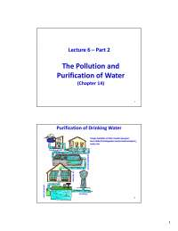 Purification of Water - Environmental Chemistry - Lecture Slides