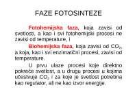 Faze fotosinteze - tamna faza