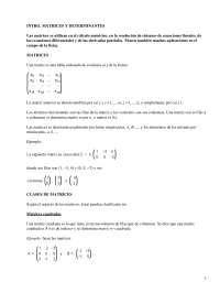Apuntes sobre Matrices y Determinantes_Part1