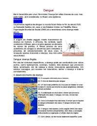 O Dengue: desenvolvimento da doença