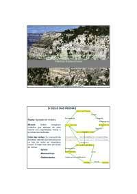Rochas Sedimentarias