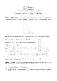 Geometria Básica AP2-GP-2012-2-Gabarito