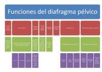 Esquemas de los temas 2-4 y 7, Esquemas y mapas conceptuales de Fisioterapia