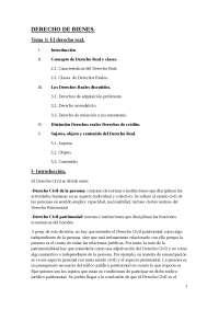 TEma 1, derecho de bienes(reales)