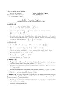 Notes sur les nombres complexes et structures algébriques