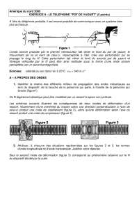 Science physisques - examen 14