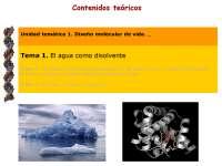 Diseño molecular de vida: el agua como disolvente