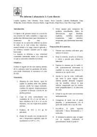 Problemas de mecánica de suelos - Pre informe - laboratorio Corte Directo