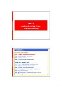 Tema 1 Estadistica Empresarial URJC