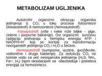 Fotosinteza - uvod