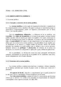 Derecho civil I - Apuntes