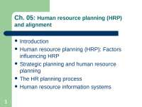 ivan ch 5human resourse planning