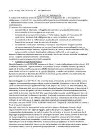 Riassunto ICT e diritto nella società dell'informazione