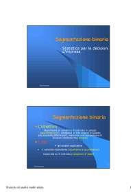 Segmentazione binaria