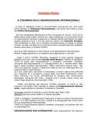 Zanghi organizzazioni internazionali