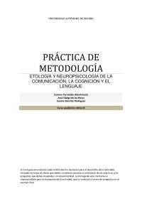 Guía práctica observación