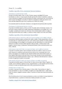 Tema 15 - Rodilla (Sin imágenes)