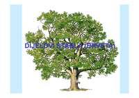Dijelovi drveta