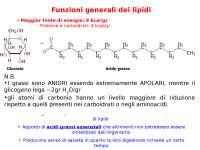 Schemi sul Metabolismo dei lipidi - biochimica di base