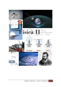Notas de Aula de Física II