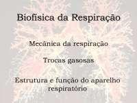 Biofisica da respiracao vet 2014