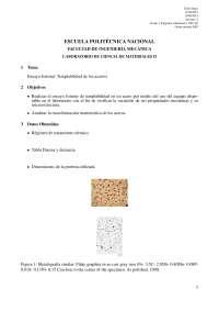 Analisis metalografico en aleaciones ferrosas