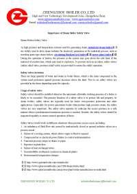 Importance of steam boiler safety valve