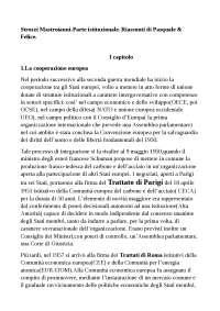 RIASSUNTO Strozzi Mastroianni parte istituzionale