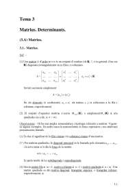 algebra lineal matrius