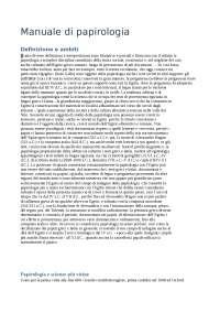 Manuale di papirologia