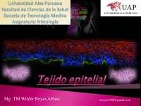 Clases 2 tejido epitelial